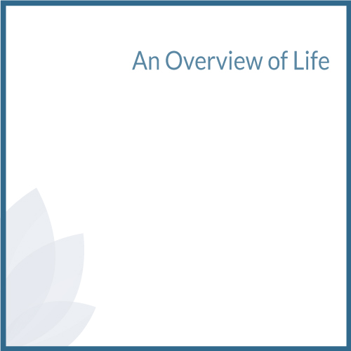 An Overview of Life